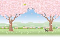 満開の桜を見て