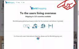 ≪海外からのご注文がよりスムーズに‼≫ World shopping ≪Orders from overseas are smoother! ≫