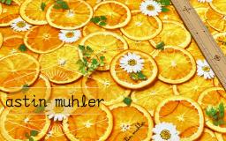 【新商品】果物の瑞々しさ ∼astin muhler∼