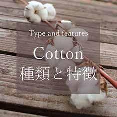 コットンの種類と特徴