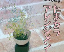 【たまカラ アレンジメント】